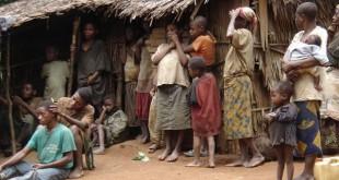 Campement baka 2, 2006