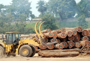 Le bois du Cameroun va +¬tre plus trac+®