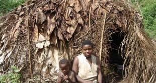 Campement baka 1, 2006